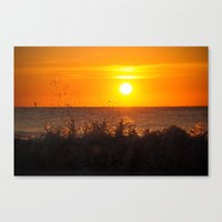 Sun + Surf Canvas Print