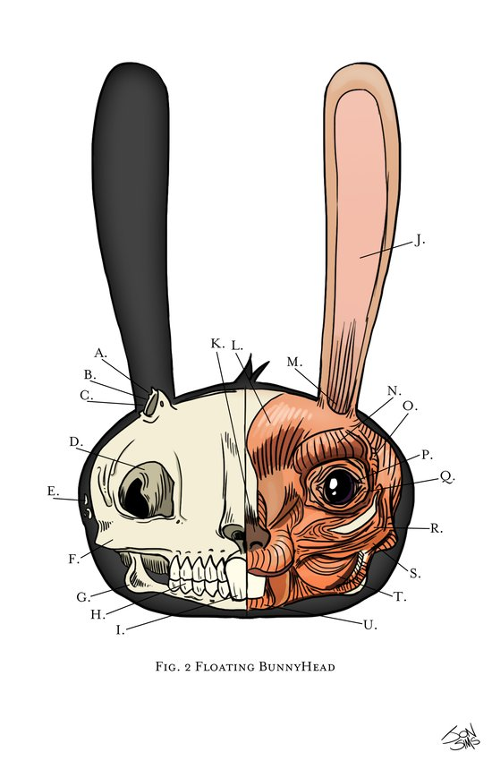 Visible Floating BunnyHead Art Print
