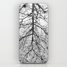 { Reflection } iPhone & iPod Skin