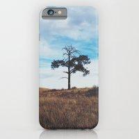 Lonely Tree iPhone 6 Slim Case