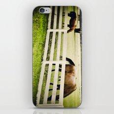 Florida horses iPhone & iPod Skin