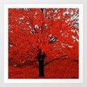 Trees  Art Print