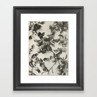 Vintage Apple Botanical Framed Art Print