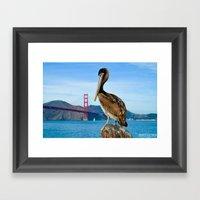 Pelican & Golden Gate Framed Art Print