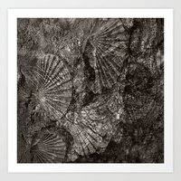 The Mystery Of The Fossi… Art Print