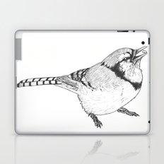 Black and White Blue Jay Laptop & iPad Skin
