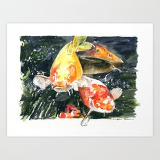 Koi carp 3 Art Print