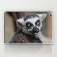 Ring Tailed Lemur Laptop & iPad Skin