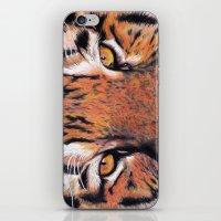 Tiger Close-up iPhone & iPod Skin
