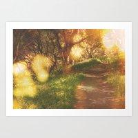 Oak Trail Art Print