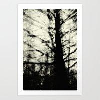 Insectus [ex. B: Having … Art Print