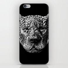 Pitbull iPhone & iPod Skin