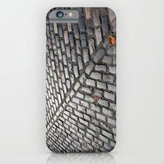 Leaves on cobblestones Slim Case iPhone 6s