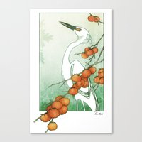 Egret and Persimmons Canvas Print