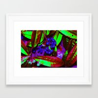 WONKA berries Framed Art Print