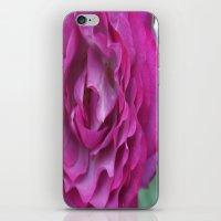 Purple Rose iPhone & iPod Skin