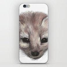 Pine Marten iPhone & iPod Skin