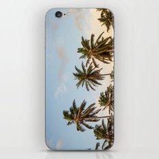 Sky beach palmier iPhone & iPod Skin