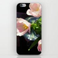 Tulip Still Life iPhone & iPod Skin