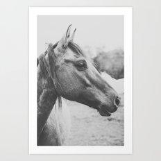 Wild Heart, No. 3 Art Print