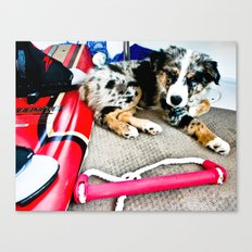Wake Boarding Pup Canvas Print