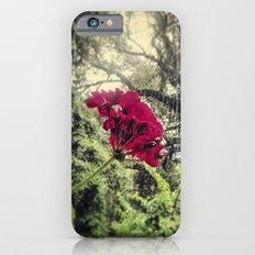 Hello, Tallahassee Slim Case iPhone 6s