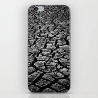 Cracked Monochrome iPhone & iPod Skin