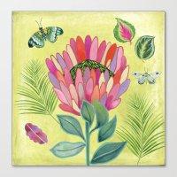 Protea Tropicana Canvas Print