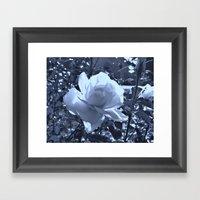 Roses VI Framed Art Print