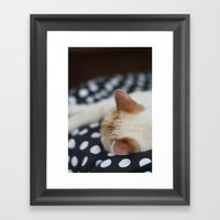Dotty Kitty Framed Art Print