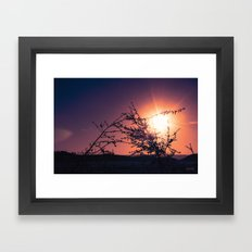 Catching the moment Framed Art Print