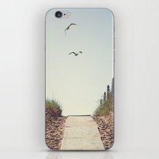 Gull Greetings  iPhone & iPod Skin