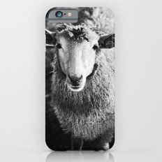 Sheep iPhone 6 Slim Case