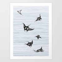 Manta rays in flight Art Print