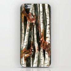 Cardinal Collection iPhone & iPod Skin