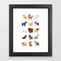 A Variety Of Dog Breeds Framed Art Print