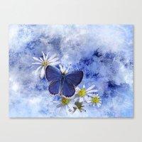 Little Blue Canvas Print