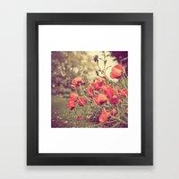 Poppy Red Framed Art Print