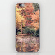 Autumn in Melbourne iPhone & iPod Skin
