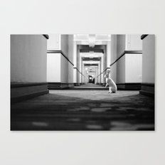 Casper at the Sheraton Canvas Print