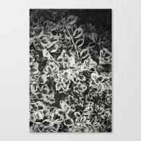 Six Feet Under II Canvas Print