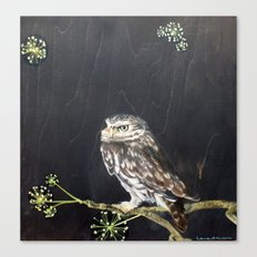 Little Owl and Ivy Canvas Print