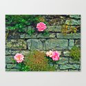Wallflowers Canvas Print