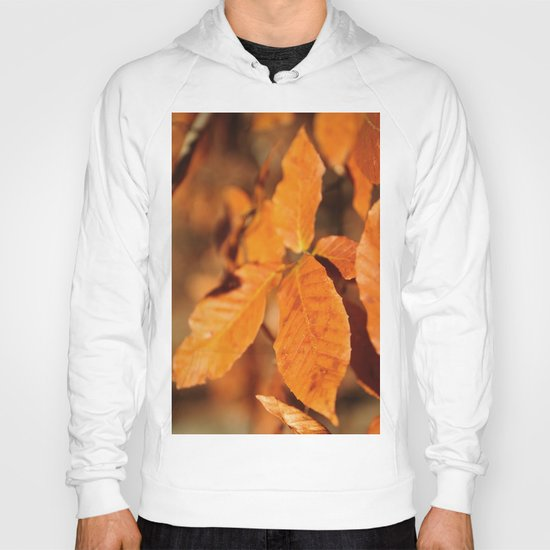Autumn Leaves Hoody