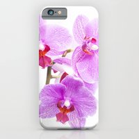iPhone & iPod Case featuring Orchids by Clive Eariss