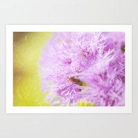 Lavender flower macro Art Print