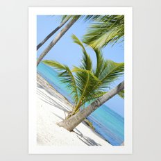 Beach Wonders.  Art Print