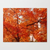New York City Foliage Canvas Print