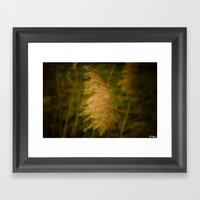 Reed Framed Art Print