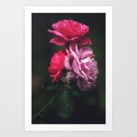 A Trio Of Flowers Art Print